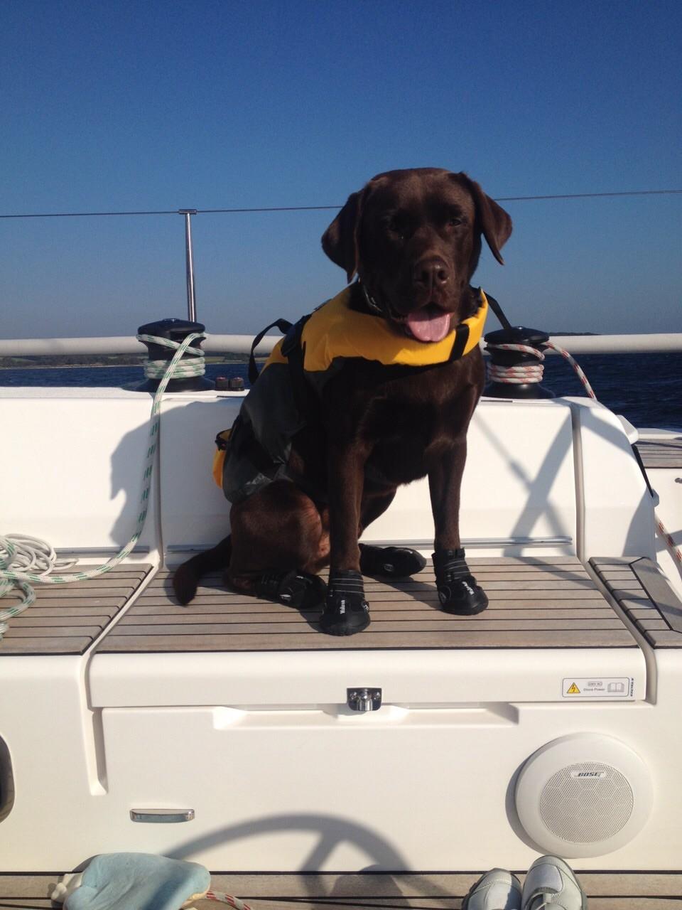 Bootsmann auf einem seiner Segeltörns
