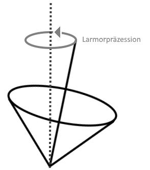 Funktionsweise der Larmorpräzession (Quelle: Frederick Behringer)