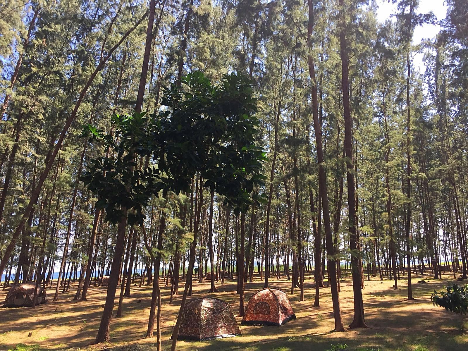 Auch im Zelt kann auf Koh Adang übernachtet werden