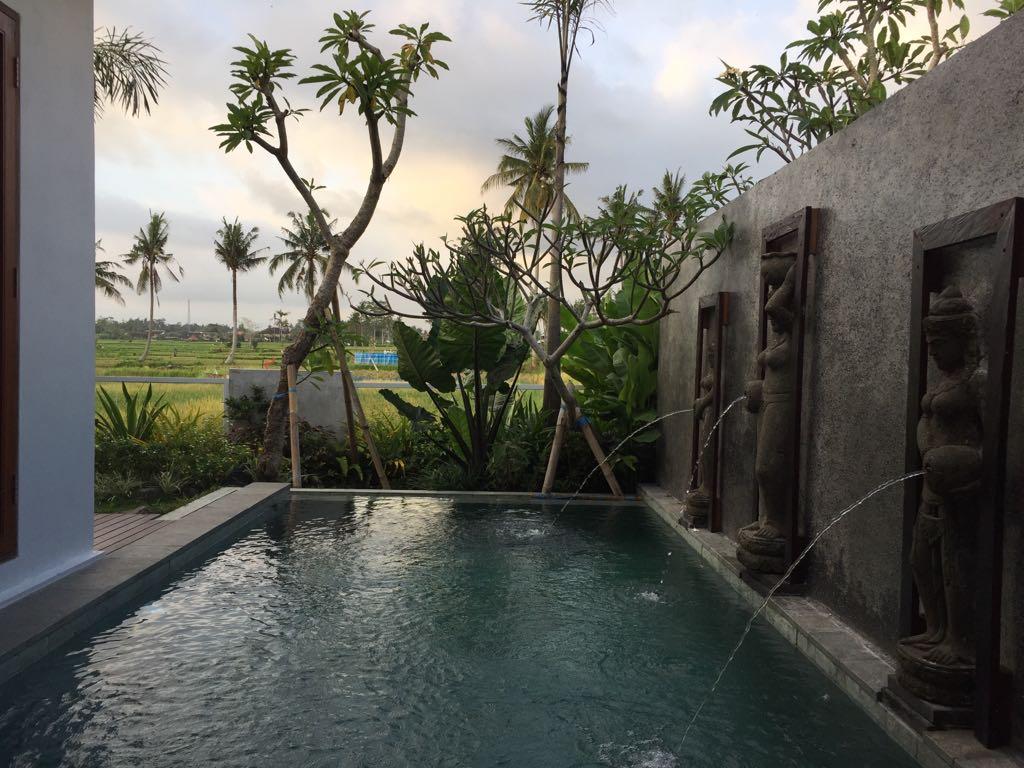 Unsere Villa im Reisfeld - über Airbnb gebucht