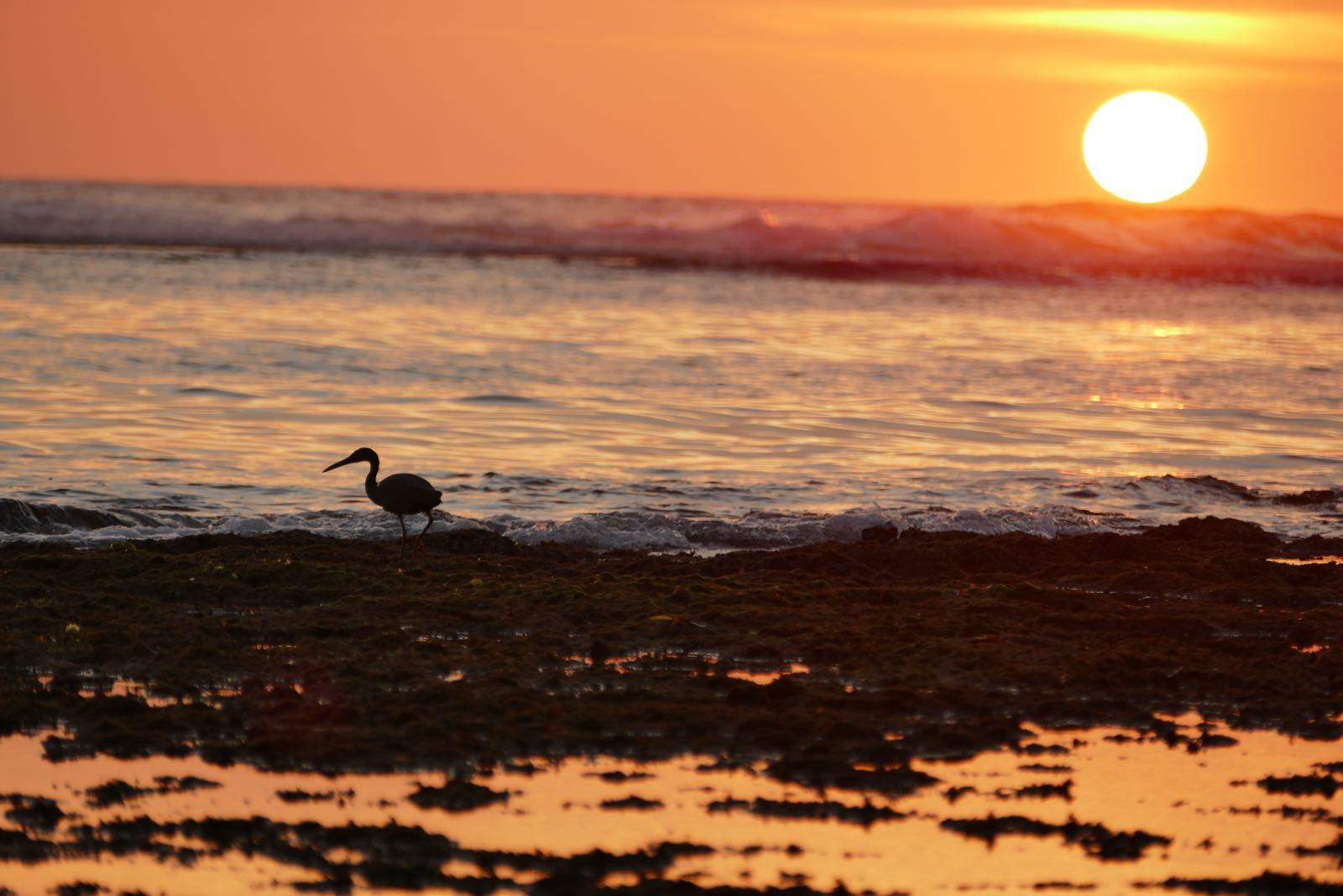 Sonnenuntergang Nyang Nyang Beach, Bali