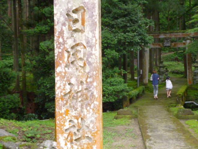 【苔(moss)の園】小松市日用町