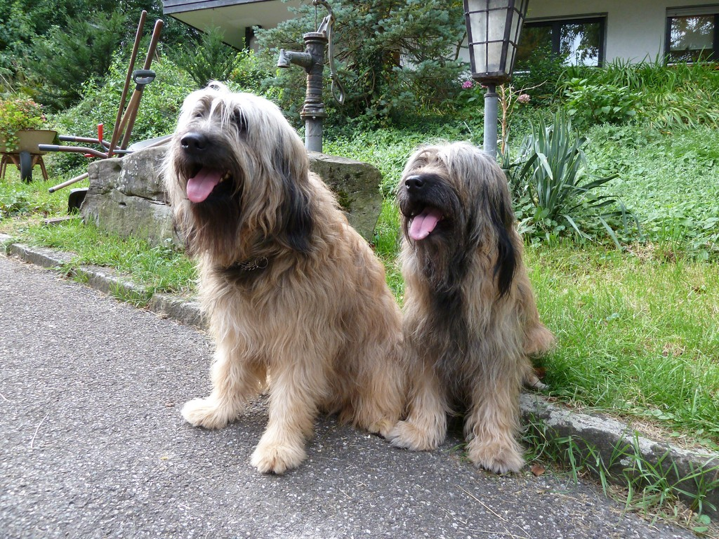 Ben und Scarlet 26.08.2010