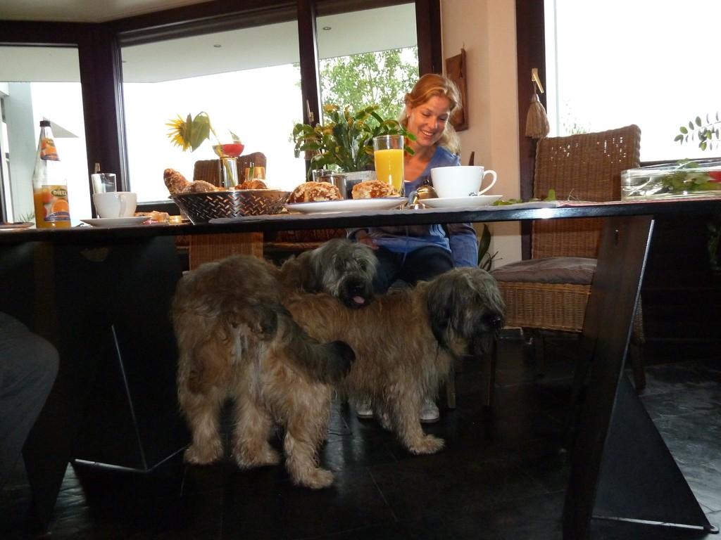 27.08.2010, was machen denn die beiden frischverliebten unter`m Frühstückstisch