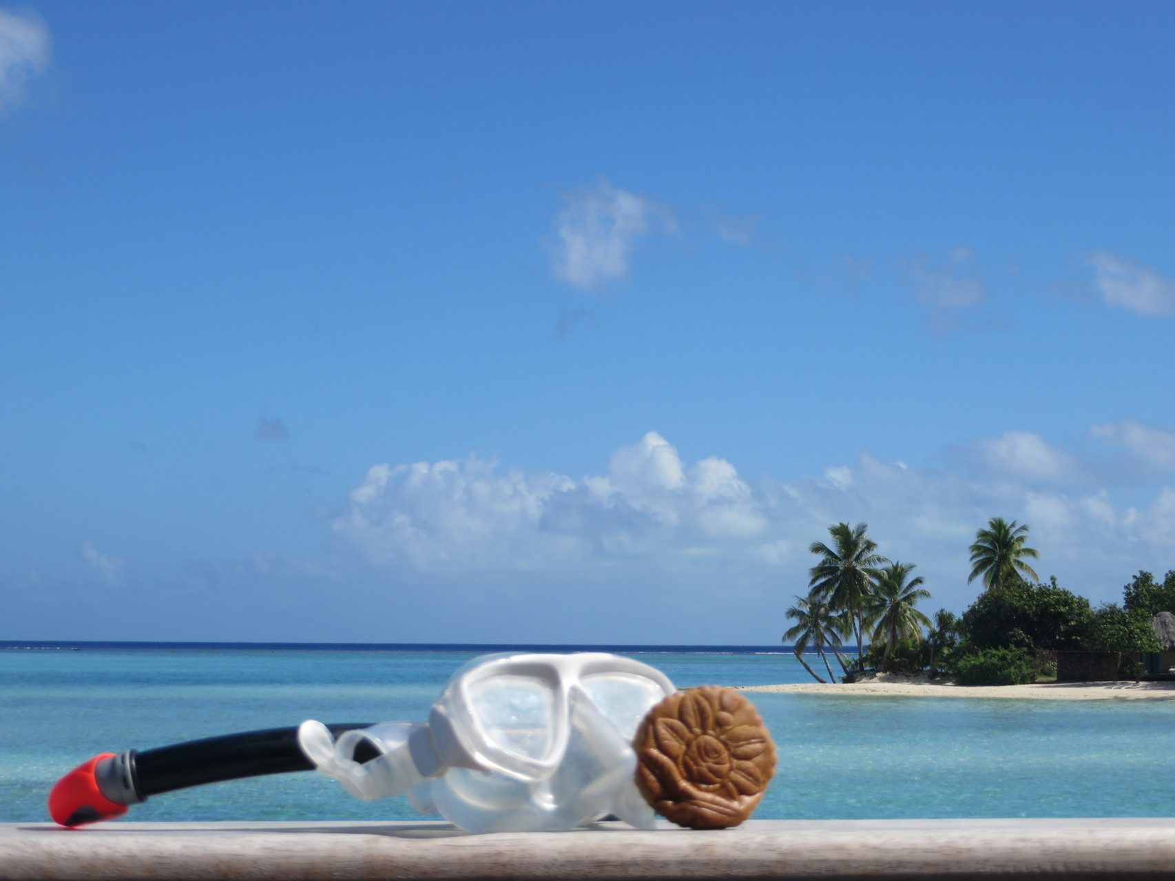 3. Preis Herr Frei mit einem Biber auf Bora Bora beim Tauchgang