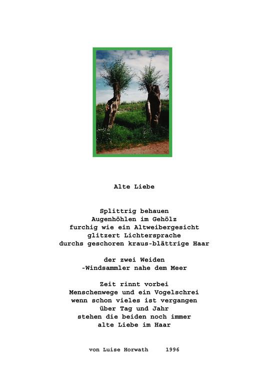 Gedicht und Foto von Luise H.