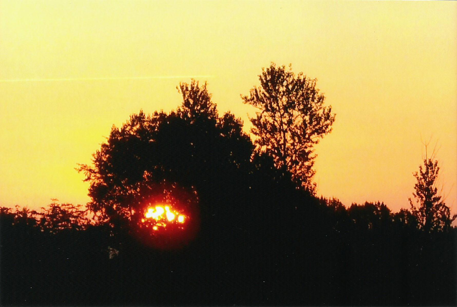 """Katze frißt Sonne"", Sonnenaufgang auf Poel / Foto L.H."
