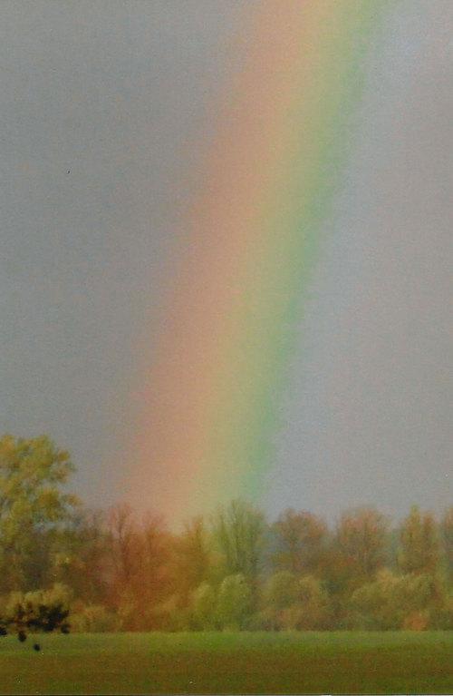 auf Poel / hier beginnt der Regenbogen / Foto L.H.