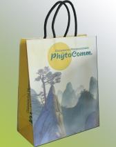 Große Auswahl an bedruckten Papiertaschen mit Baumwollkordeln