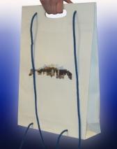 Papiertaschen mit Druck und Griffloch