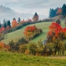 Telefoncoaching in Deutschland, Österreich und der Schweiz