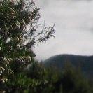 ein Ausschnitt aus dem Blick auf Teneriffa