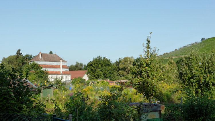 Foto: T. Karipidis, Rückwärtige Ansicht der Papiermühle Homburg
