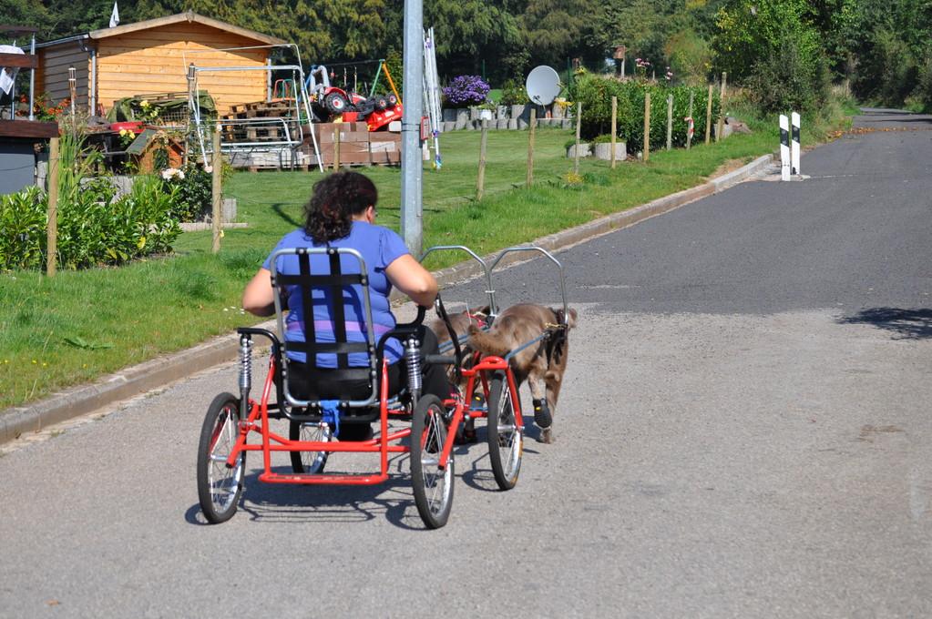 Mit dem Sacco Cart an Häusern vorbei...