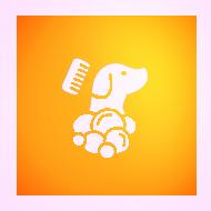 Hundesalon Plisch & Plum - Wellness, Fellpflege, Schneiden, Trimmen & Mehr