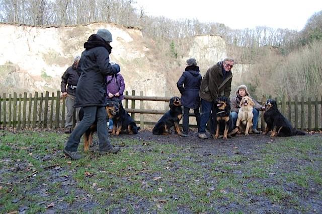 gar nicht so einfach 7 Hunde und 6 Menschen für ein Foto zu sortieren :)