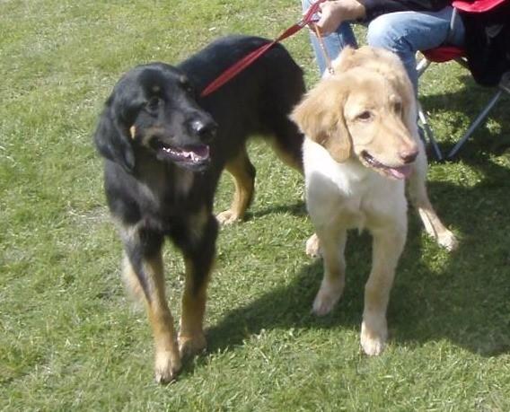 left side Bagheera with Benjamin