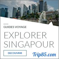 Notre Guide de Voyage sur Singapour