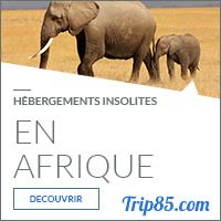 Notre sélection des hébergements insolites en Afrique