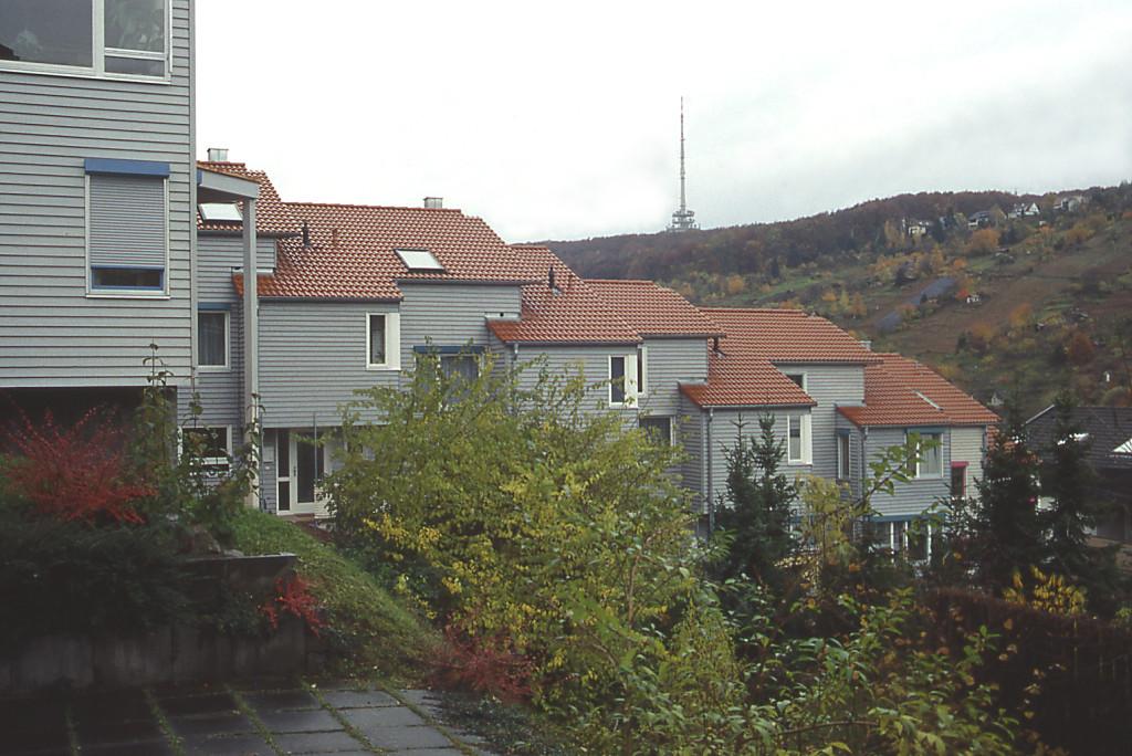 Fernblick über die Dächer
