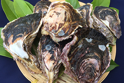 岩牡蠣 (4月~10月頃)