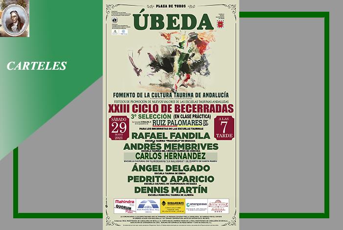 Úbeda celebrará el próximo 29 de mayo la III Selección del XXIII Ciclo de Becerradas