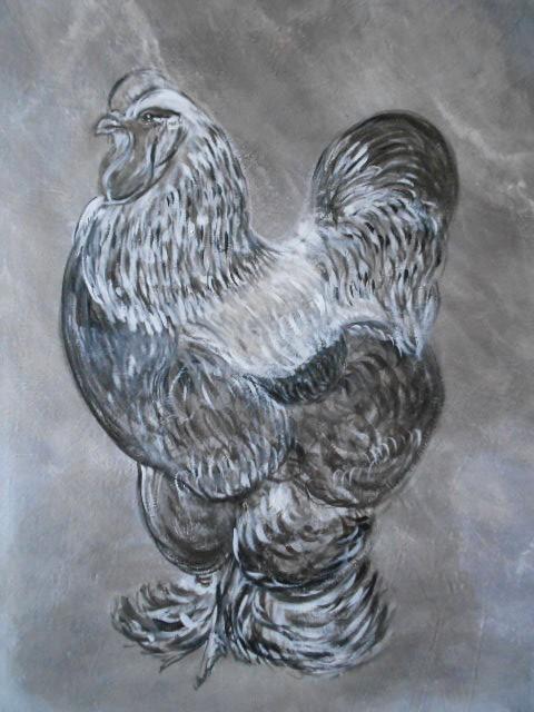 peinture coq brahma sur toile