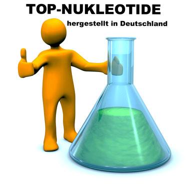 Hochreine Nukleotide und dNTP Sets