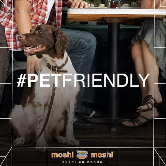 Lugares Pet Friendly en Condesa, Moshi Moshi, Condesa