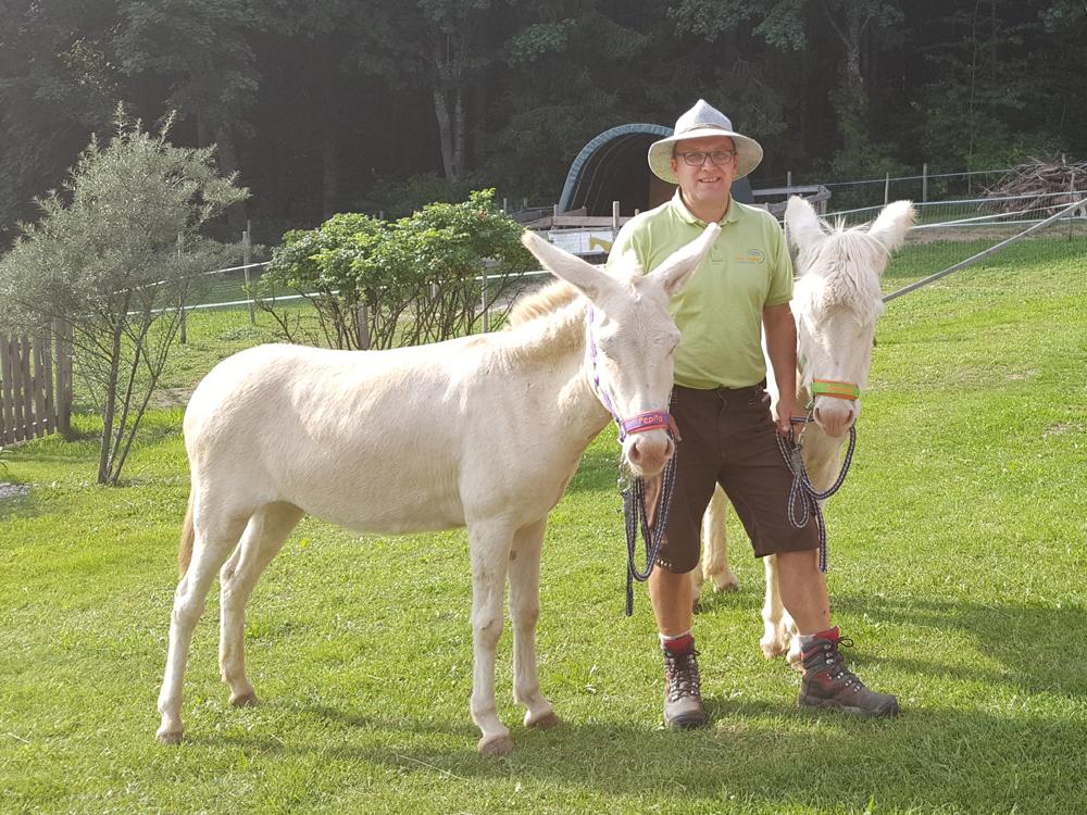 Es heißt, wer einmal mit einem Esel gewandert ist, will es immer wieder.