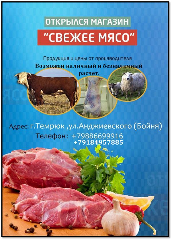 Где купить свежее мясо в Темрюке