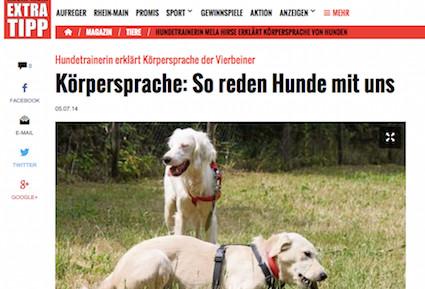 Die Körpersprache von Hunden, Screenshot Presse-Artikel vom Rhein-Main-Extra-Tipp