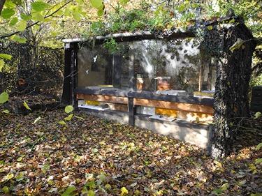 Bienenhaus: romantisch und gemütlich, aber nicht erforderlich