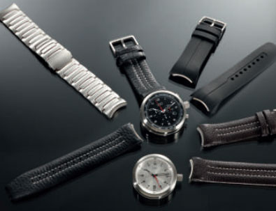 Mitschele Innovative Watchband Change System