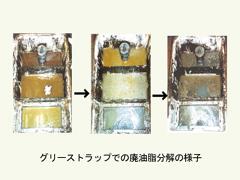 グリーストラップでの廃油脂の分解の様子。