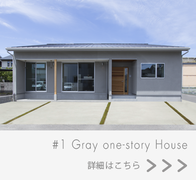 Gray one-story Houseの画像