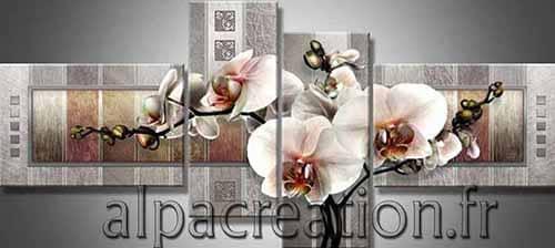 Orchidées sur béton