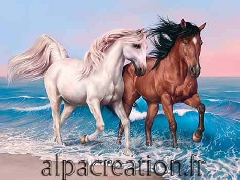 Les chevaux de bord de mer