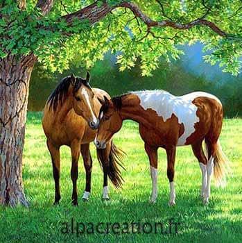 Broderie diamant chevaux au pré