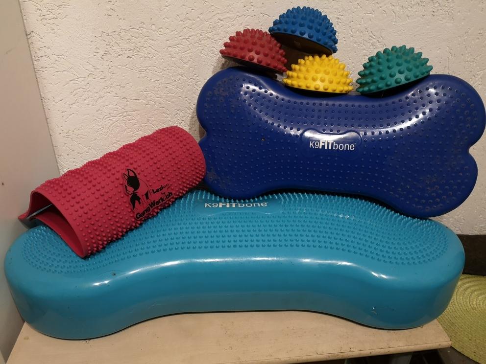 Trainingsgeräte für die Hundekrankengymnastik