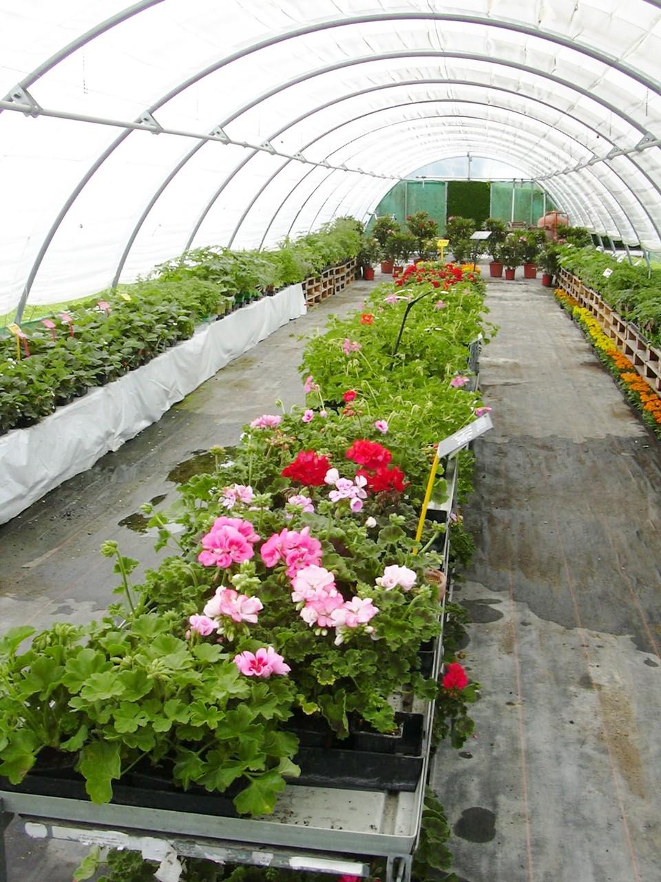 Horaires d 39 ouverture gaec des chalets horticulture - Horaire d ouverture jardin des plantes ...