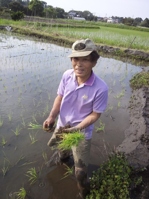 中村農園代表 中村榮一さんです。本日は親切にご指導いただきありがとうございました。
