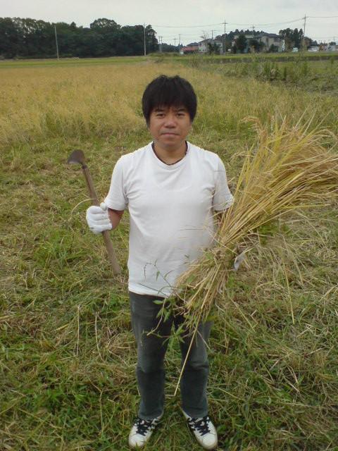 体験農業「チョー遅稲刈り2011」にいってきました。