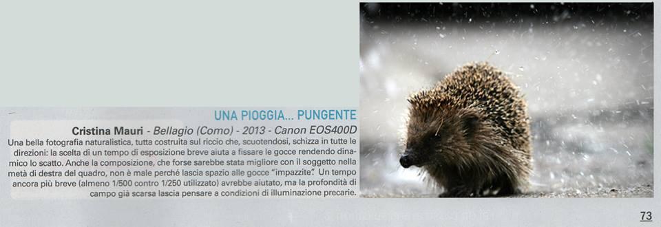 pubblicata su Mediaworld Magazine _novembre 2013