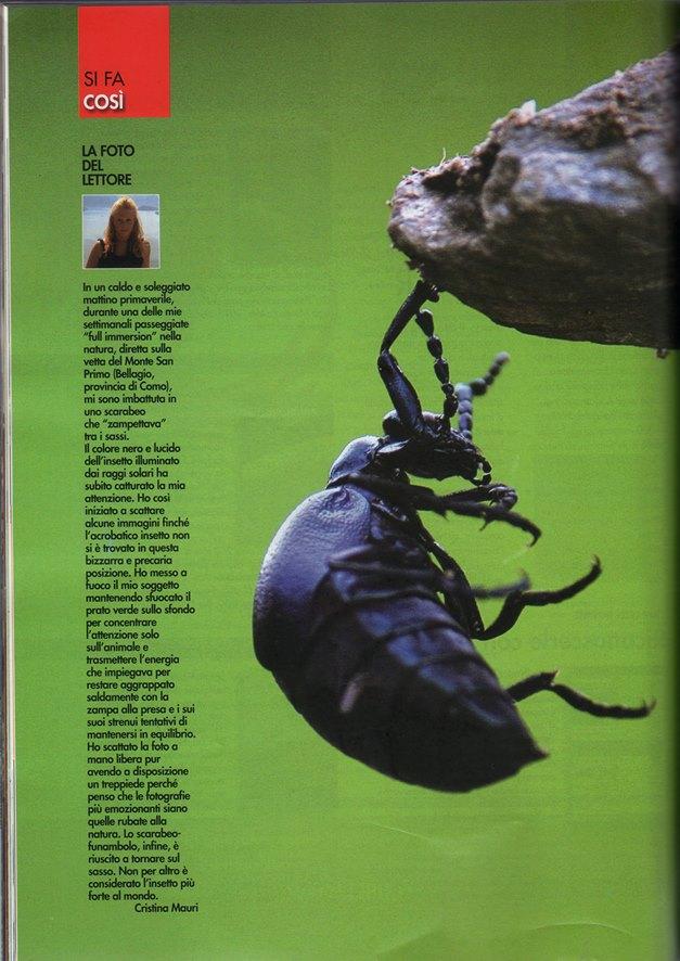 pubblicata sulla La Rivista della Natura ottobre/novembre 2013