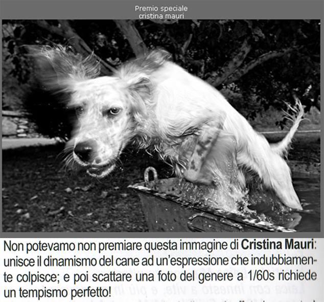"""premio speciale, pubblicata su """"Tutti Fotografi""""_ Settembre 2013"""