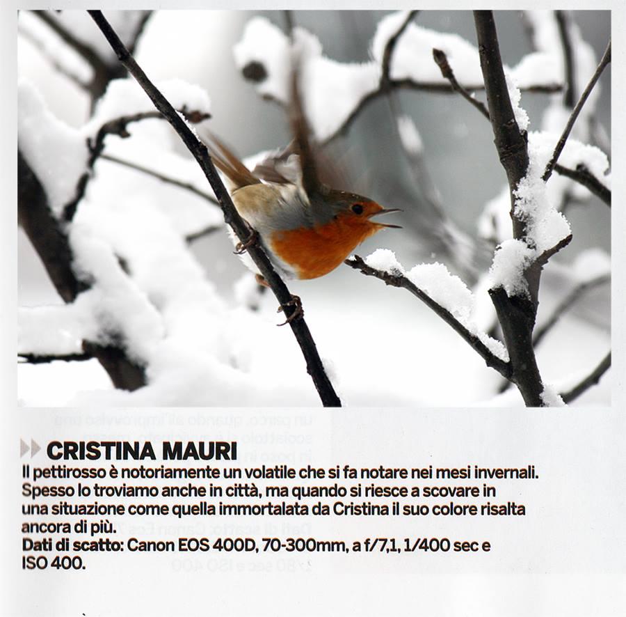 pubblicata su Digital Photographer Italia_gennaio 2014