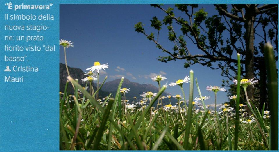 pubblicata su Focus n°236 _giugno 2012