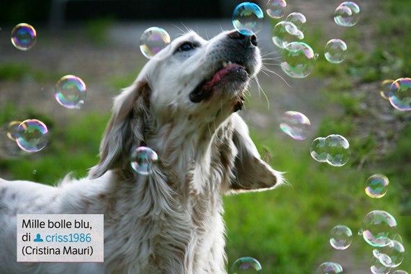 pubblicata su Focus n°239 _settembre 2012