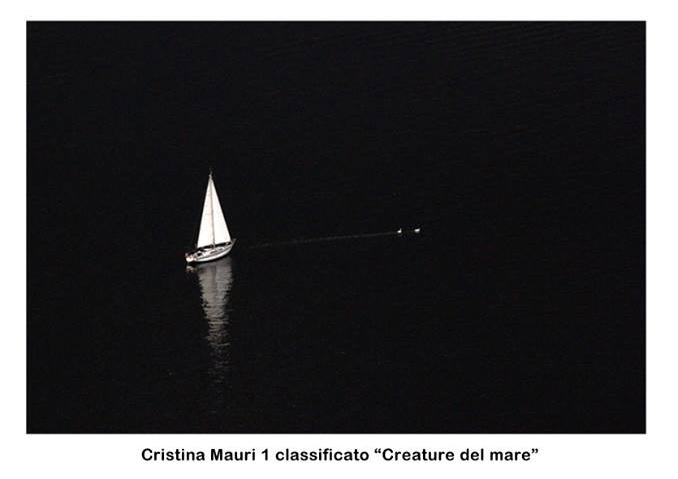 """Concorso fotografico """"Scatti di vento 2016""""  1°classificato sezione Creature del mare"""